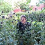 Tomas Flowerbed